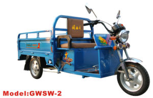 Gwsw-2 Electric Tricycle pictures & photos