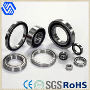 Stainless Steel All Kinds of Linear Motion Bearing pictures & photos