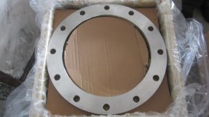 C22.8 BS En1092-1 DIN 2632 Forging Flanges, P245gh P250gh DIN Steel Flanges pictures & photos