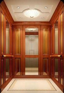 Lift Spare Parts for Villas Elevator pictures & photos
