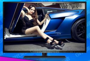 Smart 32 Inch LCD TV / LED LCD TV/ Flat Screen TV LCD TV with HDMI Output