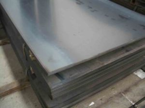 High Quality Hot Rolled Steel Plate/ Sheet