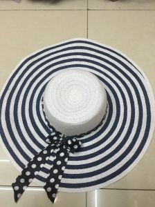Sun Straw Paper Hot Selling Promotional Topee Glacier Cap Sunbonnet Hat GS122303 pictures & photos