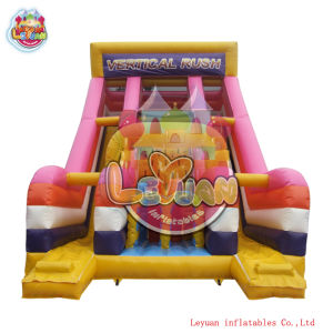 Inflatable Slide (LY-SL256)