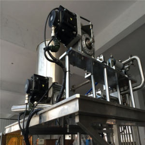 Sachet Ketchup Four-Side Sealing and Multi-Line Packing Machine pictures & photos