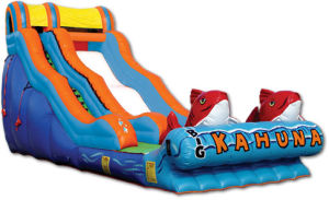 Inflatable Water Slide, Kahuna Slide (B4011) pictures & photos