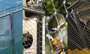 Zoo Mesh Chimpanzee Enclosure Fence pictures & photos