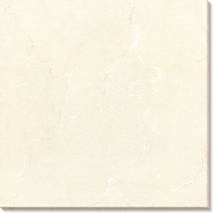 Polished Tile-Soluble Salt Terracotta Floor Tile (AJ6011JL) pictures & photos