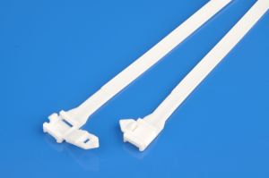 Buckle Cable Ties (nylon, 9*250) pictures & photos