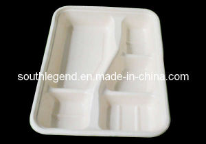 Disposable Tray (SL-D-4002)