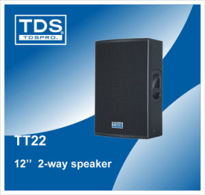 Professional Speaker System TT22 pictures & photos