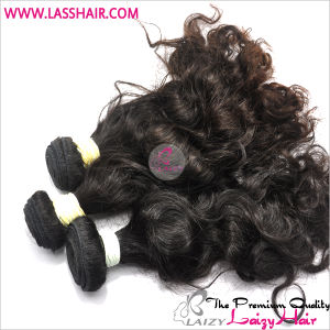 Virgin Brazilian Wave Hair
