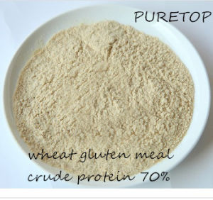 Wheat Protein Meal for Animal Feed 70% Protein