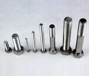316 Stainless Steel Hexagon Bolts and Nuts pictures & photos
