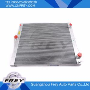 Auto Radiator 17117585035 for X5 E70 pictures & photos