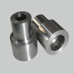 Precision Centering Plug of Mold Parts pictures & photos
