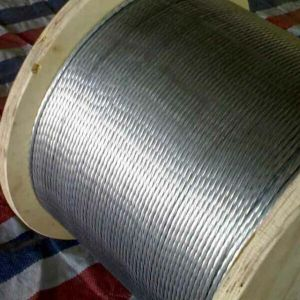 New Products Stranded Galvanized Steel Wire