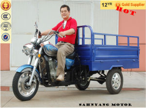3 Wheel Motorcycle 300cc Cargo Three Wheel Motorcycle pictures & photos