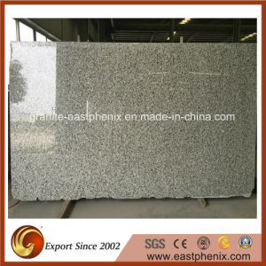 Imported Natural Granite Slab for Wall and Tile