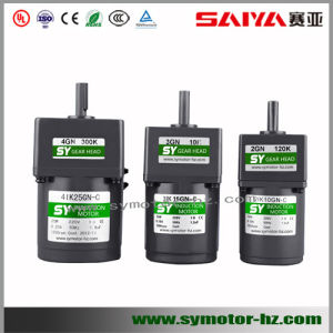 60mm 6W AC Micro Induction Motor
