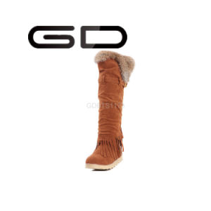Gdshoe Factory Stylish Polo Winter Fur Boots