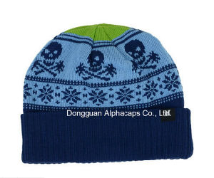 2016 Great Fashion Cool Donner Beanie Cap Keep Warm pictures & photos