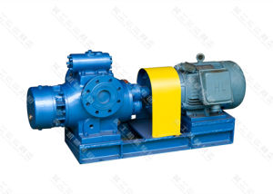 Twin Screw Type Oil Pump pictures & photos