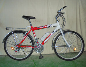 Economic and Durable Mountain Bicycle (FP-MTB-ST016) pictures & photos
