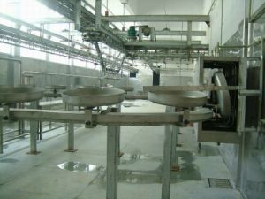Synchronous Inspection System Made in China pictures & photos