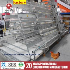 Automatic Bird Cage with Ventilation System Poultry Farms pictures & photos