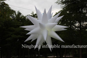 Promotion Party Used Decoration Lighting Inflatable Star for Sale