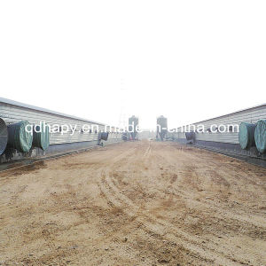Profesional Steel Structure Poultry& Livestock Farm Construction pictures & photos