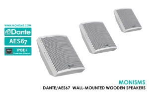 China Conference Loudspeaker IP Wall Wood Conference Speaker