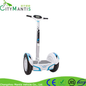 2 Wheels City Bike Scooter Electric Scooter