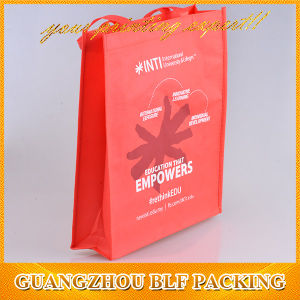Folding Reusable Bags for Nylon pictures & photos