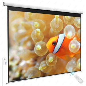 1: 1 Format China Projector Screen/Manual Screen Projector with Fiberglass Matte White pictures & photos