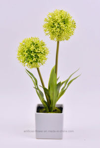 Handmade Onion Stem Plants in Square Ceramic Pot for Public Decoration