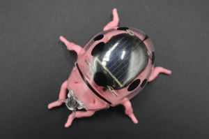 Solar Power Toys for Children pictures & photos