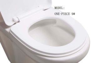 Single Piece Ceramic Toilet Super Siphonic pictures & photos