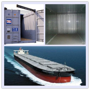 Consolidate (reefer container, bulk container, open-top container) From China to Saudi Arabia