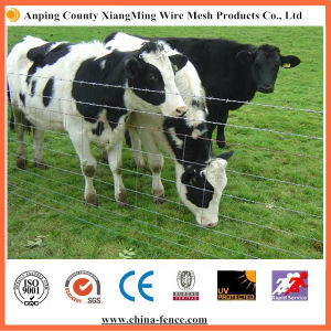 High Quality and Hot Sale Cattle Fence / Field Fence pictures & photos