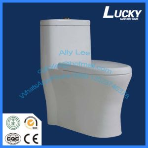 Captivating European Elegant Design Wc Toilet Save Water S Trap Washdown Toilet Floor  Mounted Water Closet
