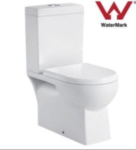 Washdown Two Pieces Toilet (WDS99B)