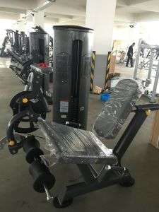 Freemotion Fitness Equipment Leg Press (SZ08) pictures & photos