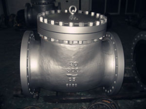 API DIN Casting Flanged Stainless Steel Swing Check Valve