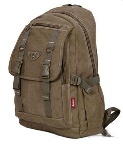 Leisure Canvas Laptop Computer Backpack pictures & photos