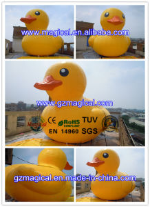 Giant Yellow Inflatable Duck Inflatable Floating Duck Model Inflatable Duck (RA-200) pictures & photos