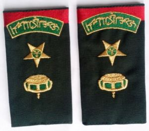 Army Shoulder Badges pictures & photos