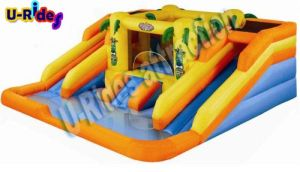 Distribution price two lanes inflatable water slide inflatable slide and slip with pool pictures & photos