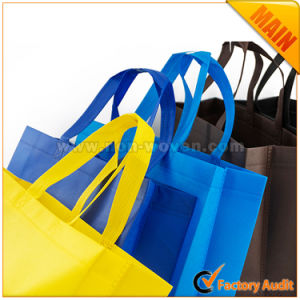 Promotional Wholesale Eco Friendly Reusable Custom Printed Advertising Shopping Nonwoven Bag pictures & photos